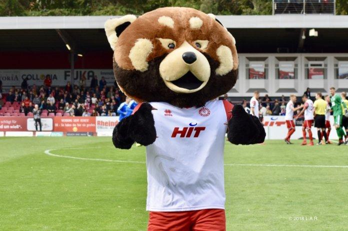 8. Spieltag 18/19: Fortuna Köln - Sportfreunde Lotte - Bild